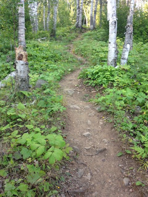 Trail up and out of Hatchet Lake