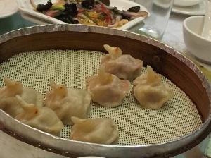 Duck Dumpling